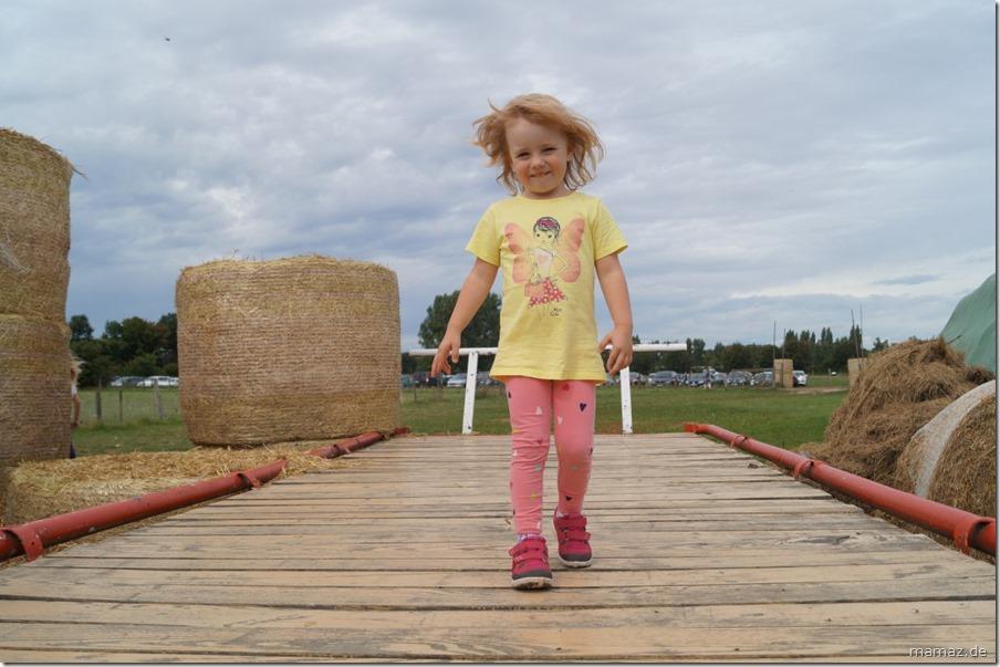 Catwalk auf dem Bauernhof