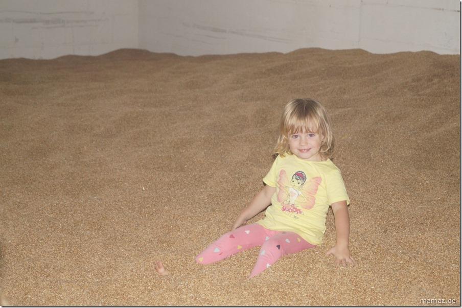 Spielen im Getreide