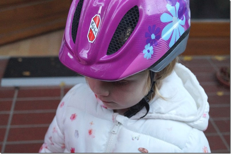 Fahrradhelm WIB