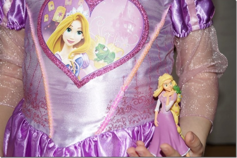 Rapunzel Kostuem Nahaufnahme