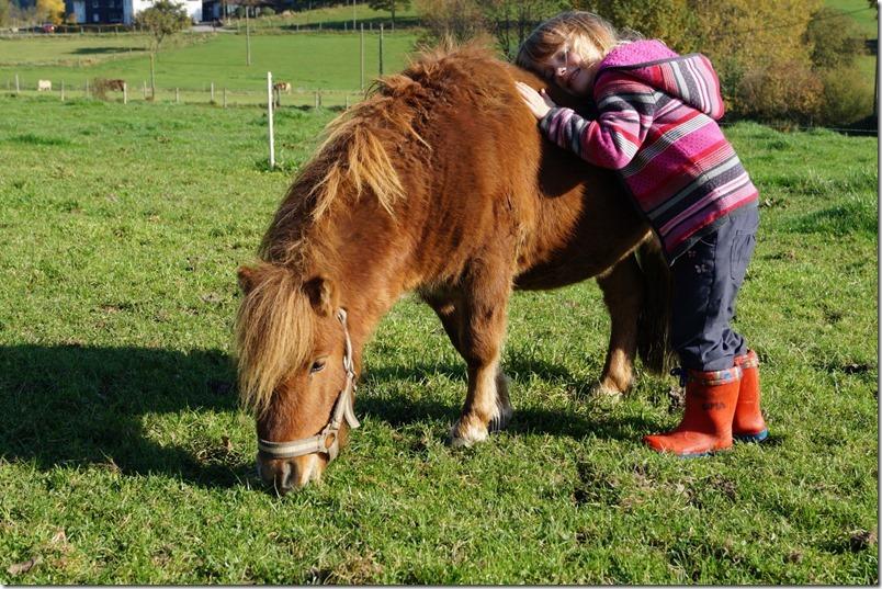 MamaZ und Pferde